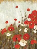 Scarlett Poppies Fine Art Print