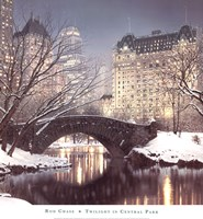 Twilight in Central Park Framed Print