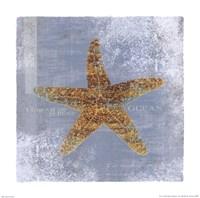 Serene Ocean Framed Print