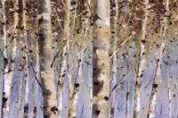 White Forest I Fine Art Print