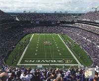 M&T Bank Stadium 2009 Fine Art Print