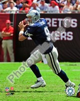 Tony Romo 2009 Action Fine Art Print