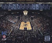 Rupp Arena University of Kentucky Wildcats 2002 Fine Art Print