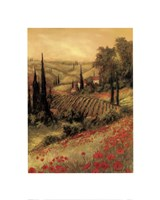 Toscano Valley I Framed Print