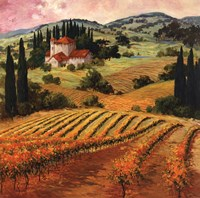 Dawn of a Tuscan Vineyard Framed Print