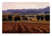 Terroir Fine Art Print