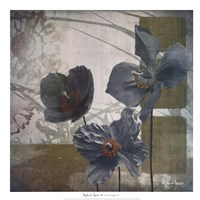 Cerulean Poppies II Fine Art Print