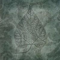 Leaves of Spring Fine Art Print