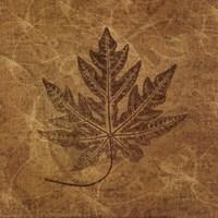 Leaves of Summer Fine Art Print