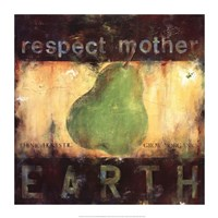Respect Mother Earth Framed Print