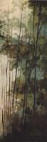 La Senda II Fine Art Print