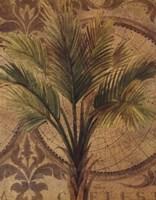Decorative Palm II Framed Print