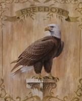 Eagle Freedom Fine Art Print
