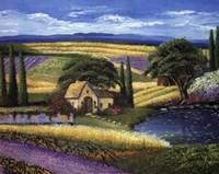 Vineyard Home Fine Art Print