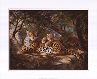 Leopard with Cub Framed Print