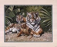 Yellow Tiger With Cubs Fine Art Print