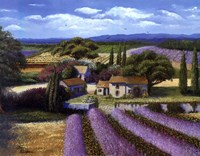 Lavender Fields Fine Art Print