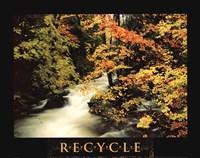 Recycle Fine Art Print