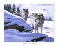 Wolves on the Prowl Framed Print