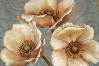 Windflower Fine Art Print