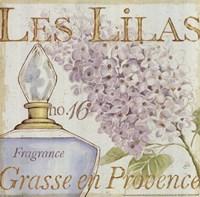Fleurs and Parfum IV Fine Art Print