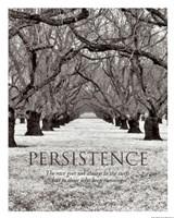 Persistence Fine Art Print