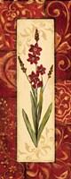 Vintage Crimson II Fine Art Print