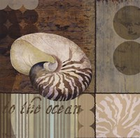 Contemporary Shell II Fine Art Print