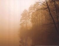 Fog on Shelly Lake I Fine Art Print