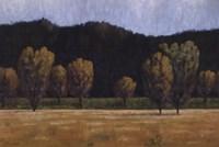Cottonwood Country II Fine Art Print