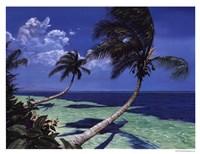Beckoning Palms Fine Art Print