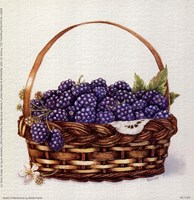 Basket Of Blackberries Framed Print