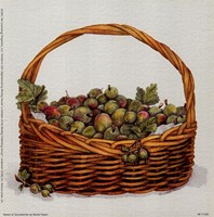 Basket Of Gooseberries Framed Print
