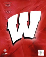 2009 University of Wisconsin Badgers Team Logo Fine Art Print