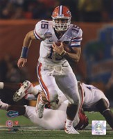 Tim Tebow University of Florida Gators 2009 Action Fine Art Print