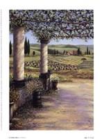 II Trebbio West Fine Art Print