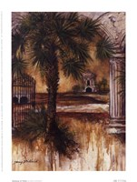 Gateway Of Palms Fine Art Print