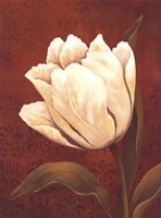 Tulip On Red- mini Fine Art Print