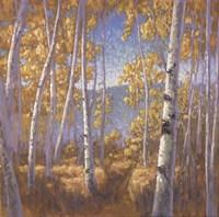 Fall Aspen II - mini Fine Art Print