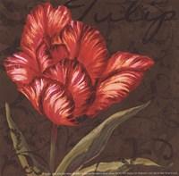 Tulipa I - Mini Framed Print