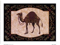 Travel In Tunisia Framed Print