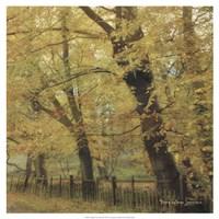 English Countryside II Fine Art Print
