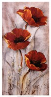 Red Poppies on Taupe II Fine Art Print