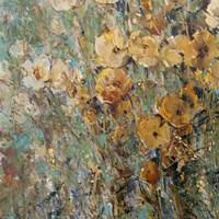 Amber Poppy Field I Framed Print
