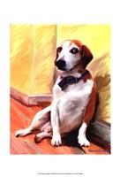 Being a Beagle Fine Art Print