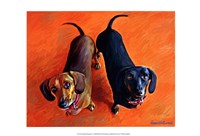 Double Dachsies Framed Print