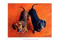 Double Dachsies Fine Art Print