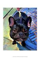 Gus Donato I Fine Art Print