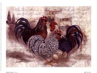 Rooster Trinity Fine Art Print
