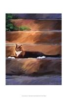 Trouble Cat Fine Art Print